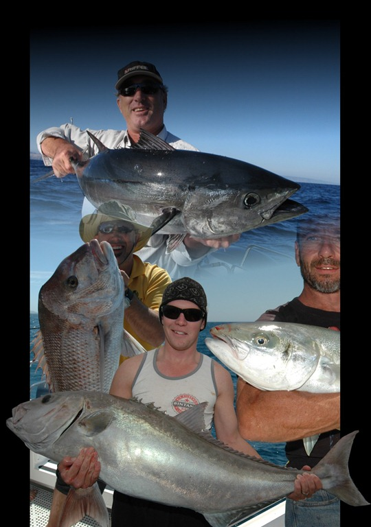 Fishing charters marion bay yorke peninsula south for Reel action fishing charters